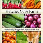 HatchetCove